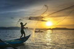 Un pescar grec, care a prins în plasă un bărbat mort și l-a aruncat înapoi în mare, a fost arestat