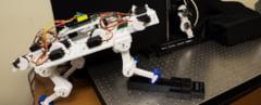 Un picior robotic a invatat sa mearga singur intr-un timp atat de scurt, incat ar trebui sa ne puna pe ganduri