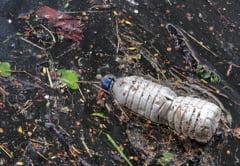 Un rau dintr-o zona turistica a Romaniei e ingropat in gunoaie. De vina sunt chiar localnicii