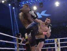 Un roman lupta pentru titlul mondial: Revenire spectaculoasa in ring