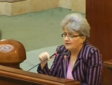 """Un senator acuza BNR ca e """"stat in stat"""": Parlamentul sa poata demite conducerea bancii"""