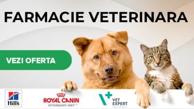 Un sprijin pentru animalele de companie - magazinul PetMax.ro