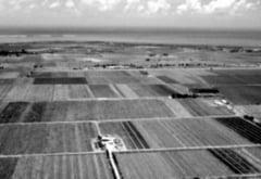 Unde sunt 20.000 de hectare de teren? - Discutii contradictorii intre directorii APIA si DADR Teleorman