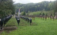 Ungaria a sesizat Consiliul Europei in cazul cimitirului din Valea Uzului