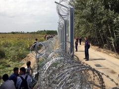 Ungaria pregateste gardul de la granita cu Romania: S-au pus deja primii stalpi (Video)