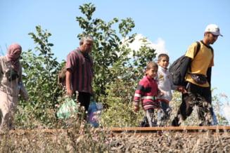 Ungaria trimite mii de soldati la granita sa ridice gardul: Record de refugiati intr-o singura zi