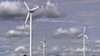 UniCredit investeste in energia eoliana din Romania