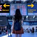 """Uniunea Europeana si Marea Britanie au convenit un nou acord post-Brexit: """"Este putin probabil sa ofere baze solide pentru afaceri transfrontaliere"""""""