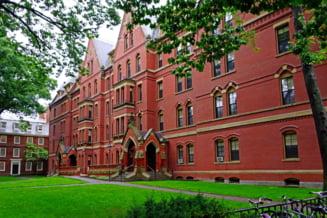 Universitatea Harvard vinde 32.000 de hectare de paduri detinute in Romania