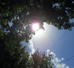 Urmeaza o vara caniculara si secetoasa - Vezi prognoza meteo din iunie pana in august