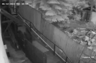 Urs filmat cand urmarea doua persoane prin Sinaia VIDEO