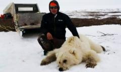 Ursii grizzly si cei polari au inceput sa se imperecheze - Una dintre specii risca sa dispara
