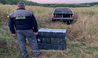 VIDEO/ FOTO Tigari din Ucraina, confiscate de politie la Sighetu Marmatiei