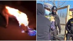 VIDEO Cruzime fara limite. Un catel a fost incendiat pentru amuzament, in judetul Buzau. Mascatii si un ONG au intervenit
