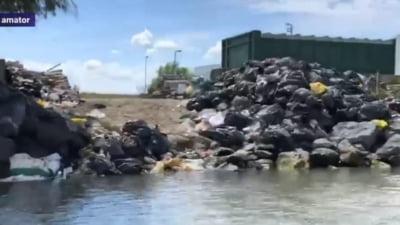 """VIDEO Delta Dunarii: saci de gunoaie aruncati pe malul apei. Ministrul Mediului considera situatia """"revoltatoare"""""""
