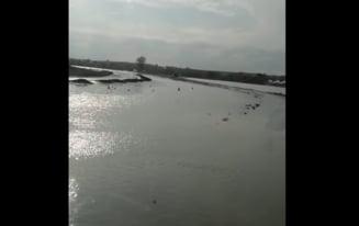 VIDEO Drum judetean din Constanta, inchis din cauza inundatiilor