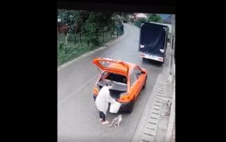 VIDEO Femeie filmata in Prahova cand abandona o pisica si puii ei langa drum. Ce s-a intamplat cu animalele