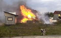 VIDEO Incendiu violent intr-un cartier din Deva. Pompierii au stins flacarile inainte de a cuprinde mai multe masini