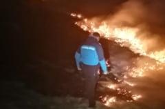 VIDEO Incendiu violent pe o pasune din judetul Bistrita-Nasaud. Jandarmii montani au stins focul