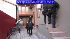 VIDEO Politia si DIICOT anunta destructurarea uneia dintre cele mai mari retele de traficanti de droguri din judetele Braila si Galati, dupa 74 de perchezitii