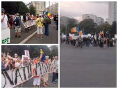 "VIDEO Proteste in paralel in Piata Victoriei: ""Diaspora da papucii"" si opozantii masurilor sanitare"