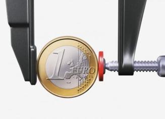 Va supravietui euro crizei economice?