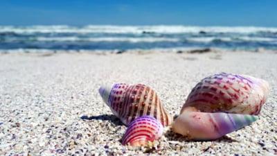Vacanta de vara pe litoralul de lux romanesc versus cele mai populare statiuni la Marea Neagra din Bulgaria. Comparatia de preturi