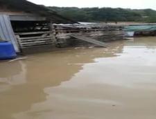 Valcea video inundatii pompieri