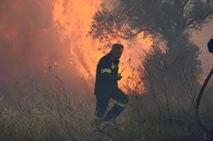 Vara de foc in Grecia: Incendii de padure si pene de curent