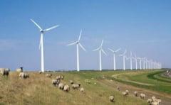 Vaslui: 27 de parcuri eoliene, construite in urmatorii trei ani