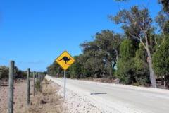 Verile din Australia au devenit cu 50% mai lungi din cauza schimbarilor climatice