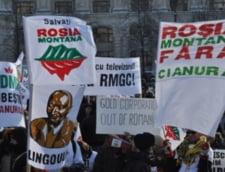 Verzii protesteaza vineri pentru Rosia Montana. Vezi unde