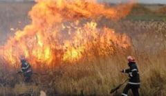 Vestitorii primaverii - incendiile?