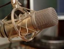 Vezi cine va furniza audientele radio intre 2012 si 2015