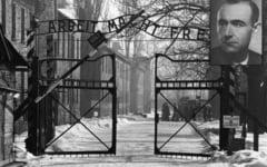 Viata secreta a unui scriitor timisorean: angajat Auschwitz, turnator la Securitate