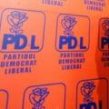 "Vice PDL, despre primarii ""fugari"": Ii impiedicam sa se ""dezlege"", functia e proprietatea partidului"