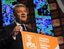 Vicepresedintele PDL Mircea Hava ar pleca la alt partid, daca acest lucru ar ajuta Alba Iulia