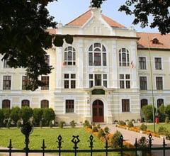 Viceprimar contra liceu maghiar, un troc politic intre UDMR si PDL la Targu Mures?