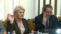 Viceprimarul Albu deschide usile Primariei Satu Mare pentru colindatori