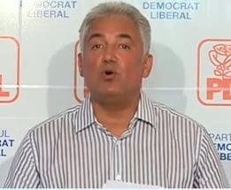 Videanu: Decizia de oportunitate a luat-o Guvernul, nu eu singur. Inclusiv Ponta