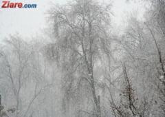 Vine iarna! Cod galben de frig si ninsori, inclusiv pentru Bucuresti