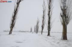 Vine iarna! Harta drumurilor nationale si autostrazilor cu risc de inzapezire