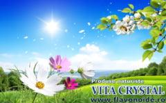 Vita Crystal contine o doza activa de flavonoide pentru sanatatea ta. Afla acum efectele acestor ingrediente naturale!
