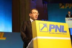 Voicu: Reexaminarea legii finantarii partidelor este in sensul unor corectii, nu a eliminarii acesteia