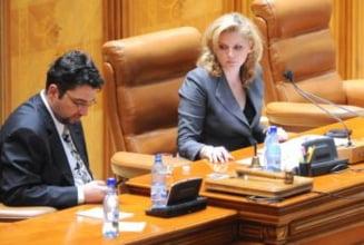 Voinescu: Nu mai candidez la Parlament, imi deschid un cabinet de avocatura