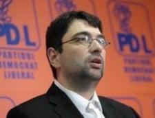 Voinescu ataca PDL la varf: Nu poti pune idei mari in gura pigmeilor. O noua suspendare? Interviu