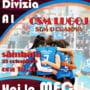 Volei, Divizia A1. Meci important in weekend