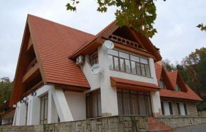 Voronin a plecat de la resedinta prezidentiala cu gaini, muraturi si vin de colectie
