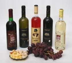 Voronin interzice inspectiile rusesti asupra vinurilor moldovenesti