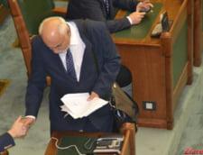 Vosganian: Exista impresia ca ne negociem linistea politica finantand excesiv SRI